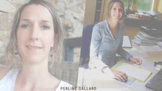Perline gallard
